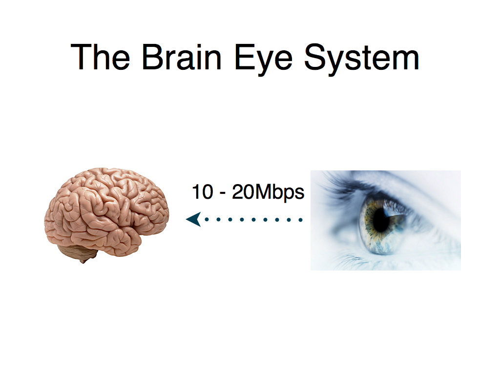 ignite-philly-slides.004 the brain eye system